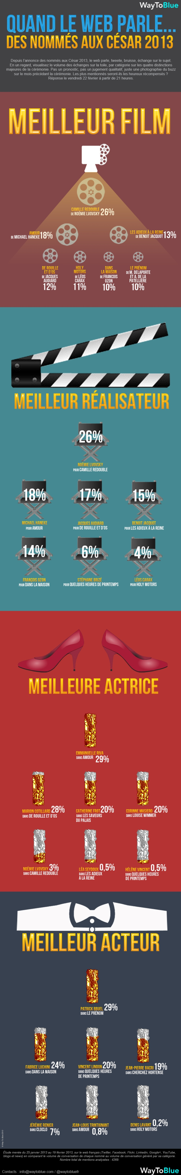 W2B_InfographieCesar2013